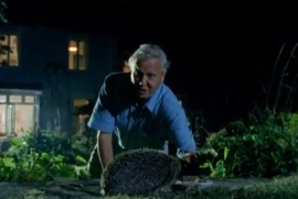 David Attenborough harasses a hedgehog.